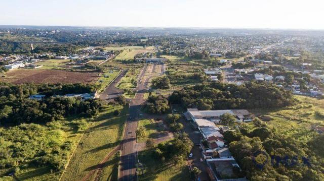 Terreno à venda, 7200 m² por R$ 3.000.000,00 - Jardim Veraneio - Foz do Iguaçu/PR - Foto 11