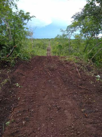 Fazenda Pitomba - 632 Hectares - Conceição do Tocantins - F210210 - Foto 2