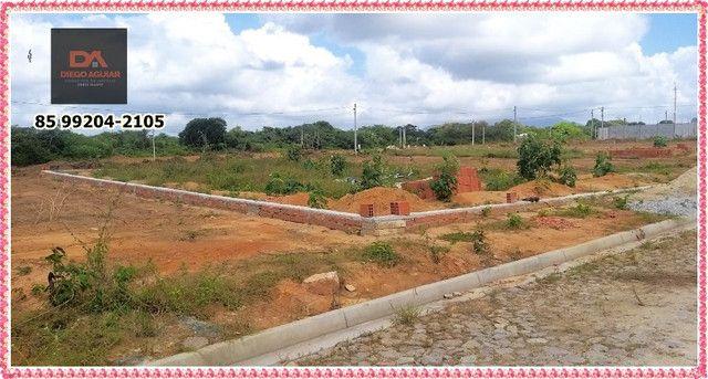 Lotes Boa Vista as margens da BR-116 &¨%$ - Foto 16