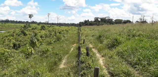 Fazenda em Roraima top - Foto 8
