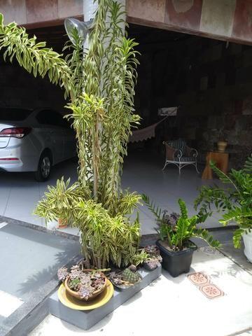 Grande Oportunidade - Casa Feira de Santana - Foto 7