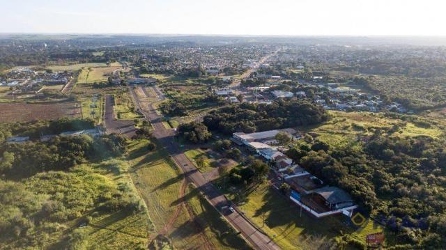 Terreno à venda, 7200 m² por R$ 3.000.000,00 - Jardim Veraneio - Foz do Iguaçu/PR - Foto 10