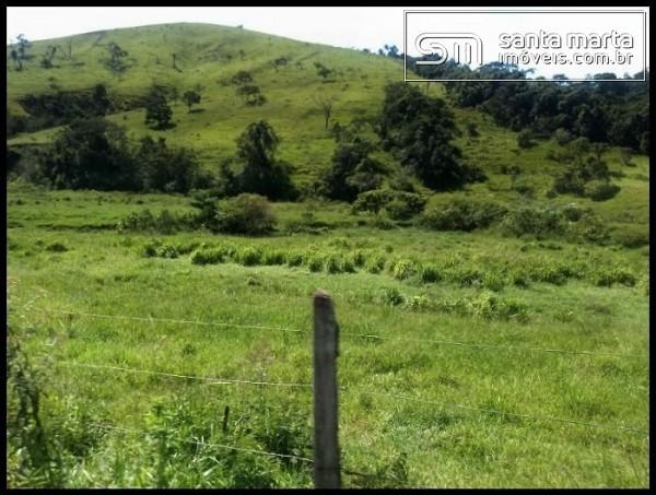 FAZENDA EXCELENTE - GADO CORTE/LEITE - GUARATINGUETÁ - SP - Foto 4
