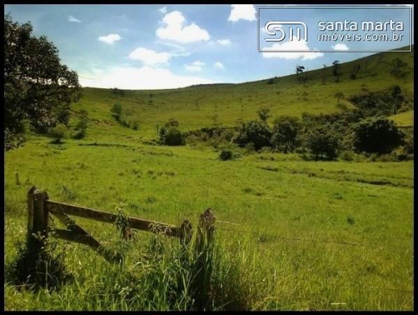 FAZENDA EXCELENTE - GADO CORTE/LEITE - GUARATINGUETÁ - SP - Foto 5