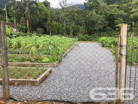 Chácara à venda com 3 dormitórios em Vila nova, Joinville cod:01028884 - Foto 8