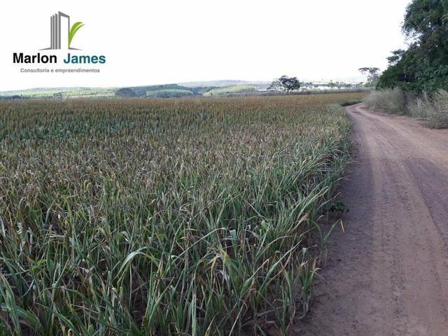 Fazenda em Padre Bernardo! - Foto 10