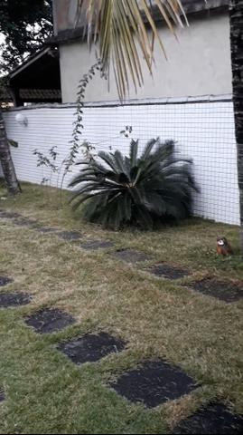 Vendo casa em Cabo Frio (unamar ) - Foto 20