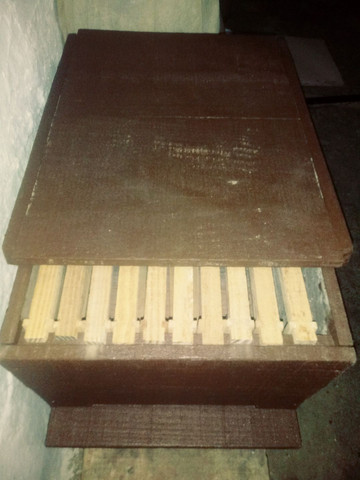 Caixa de abelha apis - Foto 3