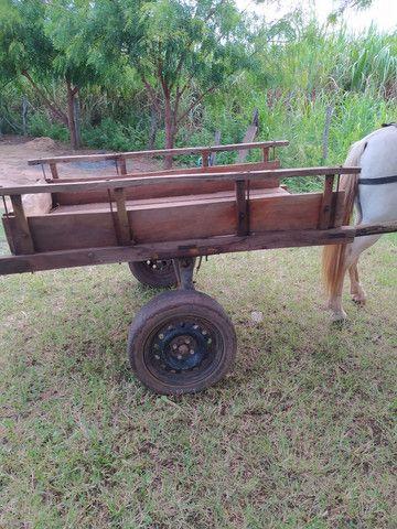 Carroça completa, com cavalo e arreios. - Foto 2