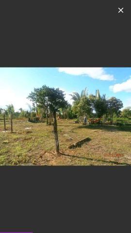 Vende se ou troco sitio na br 230 km 17 sentido Humaitá a Apuí ótimo localização