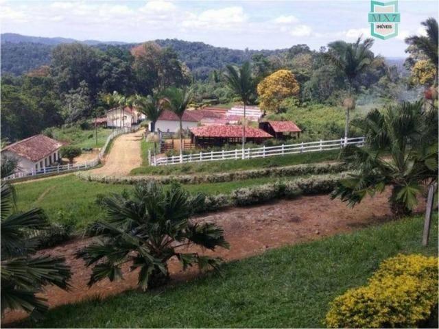Aiquara . Ótima fazenda produtora de cacau - Foto 3