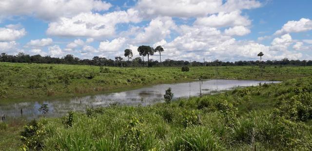 Fazenda em Roraima top - Foto 7
