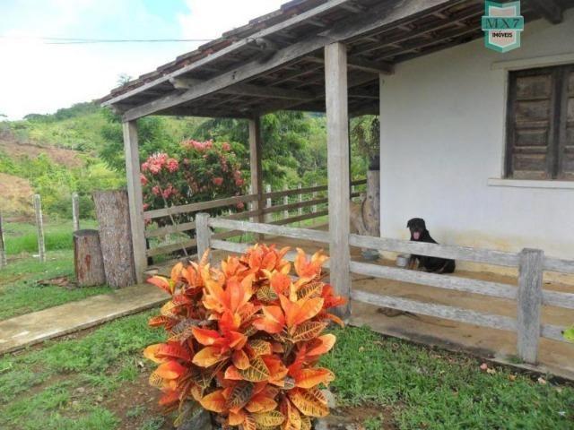 Fazenda Itamaraty com 300 Hectares, potencial para 300 gados, 70 hectares de cacau - Foto 17