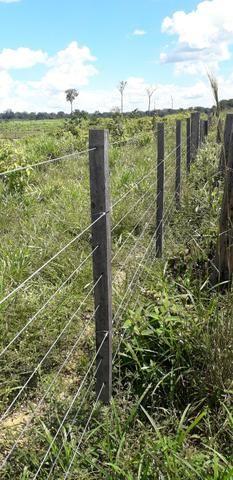 Fazenda em Roraima top - Foto 9