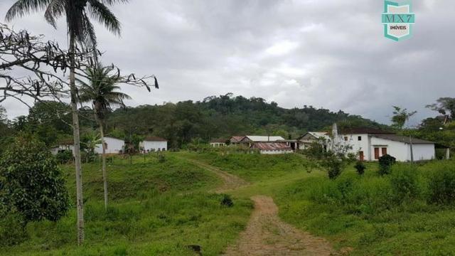 Ubaitaba. Fazenda de 450 Hectares, produção de cacau e gado, completa infraestrutura. - Foto 15