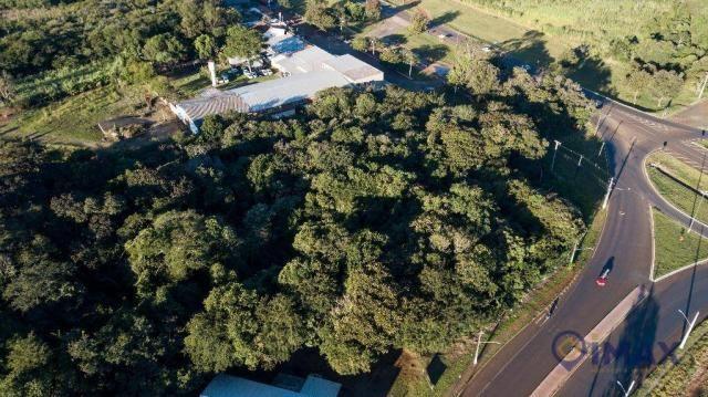 Terreno à venda, 7200 m² por R$ 3.000.000,00 - Jardim Veraneio - Foz do Iguaçu/PR - Foto 6