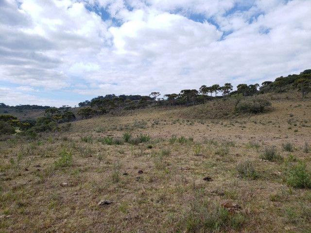 Sitio em Urupema/ sitio próximo de Urubici - Foto 2
