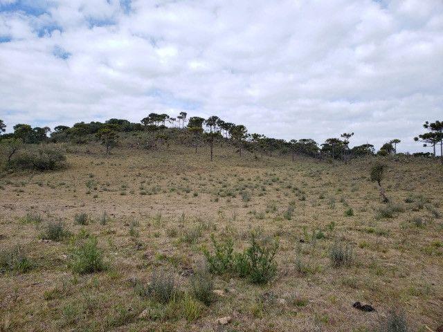 Sitio em Urupema/ sitio próximo de Urubici - Foto 6