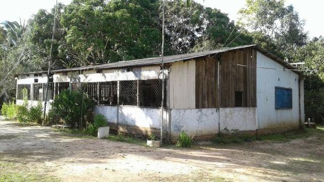 Fazenda no km 42, rumo Humaitá, com 100.00ha - Foto 5