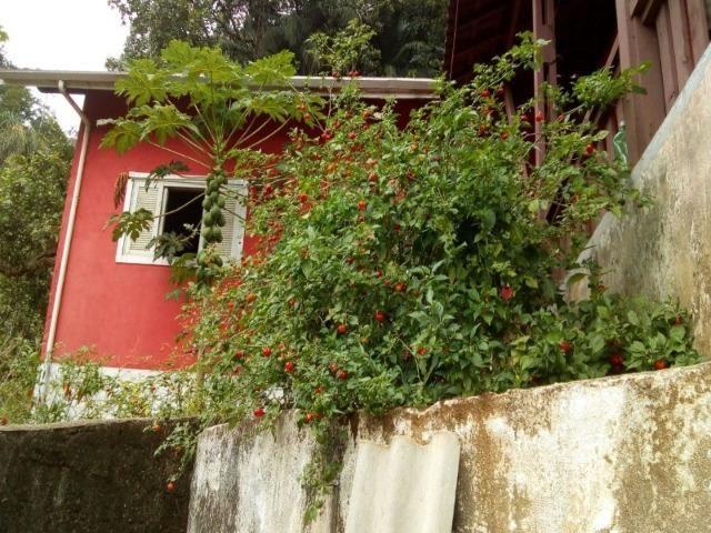Maravilhosa Chácara em Itanhaém linda linda linda Alexandre - Foto 5