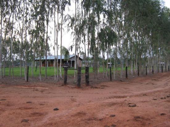 Fazenda para Arrendamento de Soja