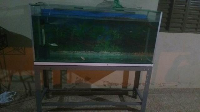 Vendo Aquario de 410 litros