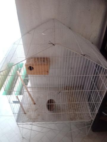 Gaiola viveiro para pássaros