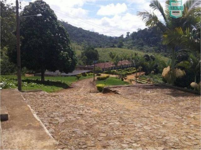 Aiquara . Ótima fazenda produtora de cacau - Foto 12