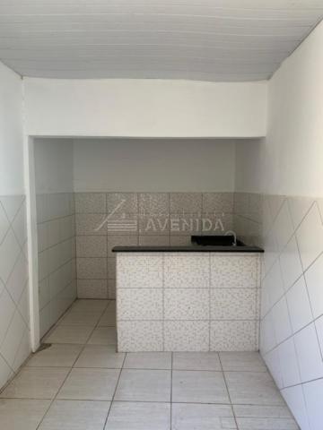 Casa para alugar com 2 dormitórios em Arapongas, Londrina cod:00601.003 - Foto 5