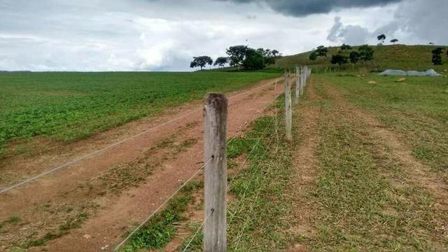 60 Alq. Troca Por Faz. Tocantins Mato Grosso Ou Goias + Acima 400 Alq - Foto 4
