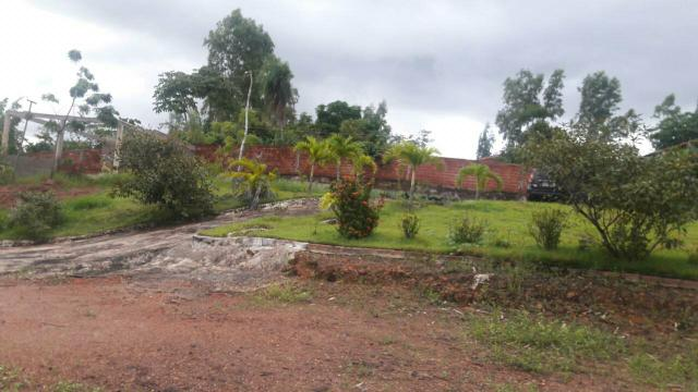 Sitio na zona Rural de sao luis - Foto 3