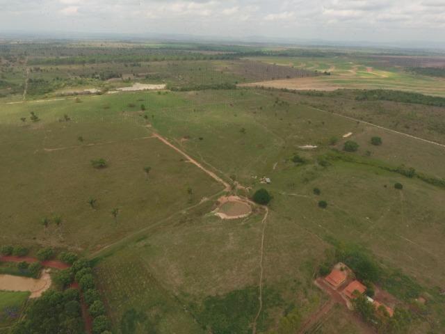 Fazenda 5.900 há (1.219 alq) pronta para produção Bovina norte do Tocantins - Foto 15