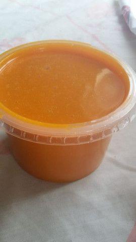 Polpas de manga e de tamarindo de meio kilo por apenas 5,00$