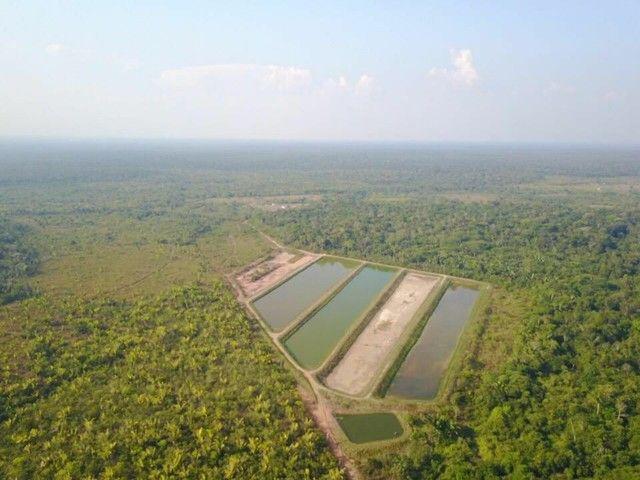 Fazenda com 123 hectares e 4 tanques de peixes