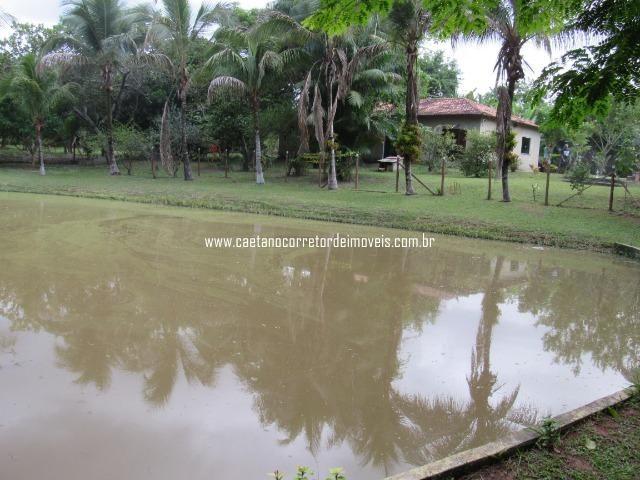 Caetano Imóveis - Sítio com natureza exuberante e muita água (lugar apaixonante) - Foto 17