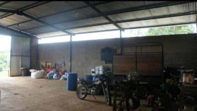 Fazenda 225 km de Goiânia município de Ipameri - Foto 10