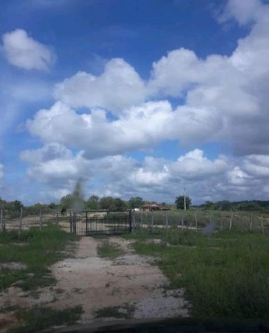 Fazenda rural em forquilha - Foto 14