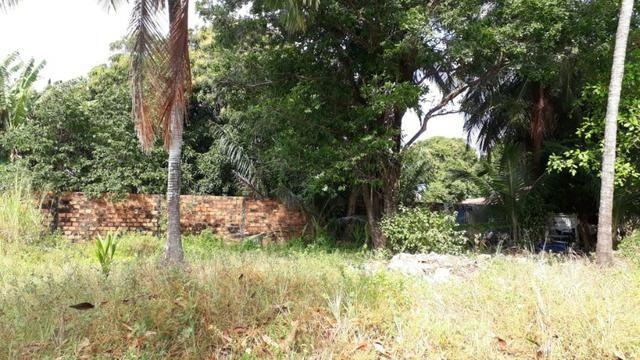 Vendo terreno na Vila de Cuiarana - Foto 4