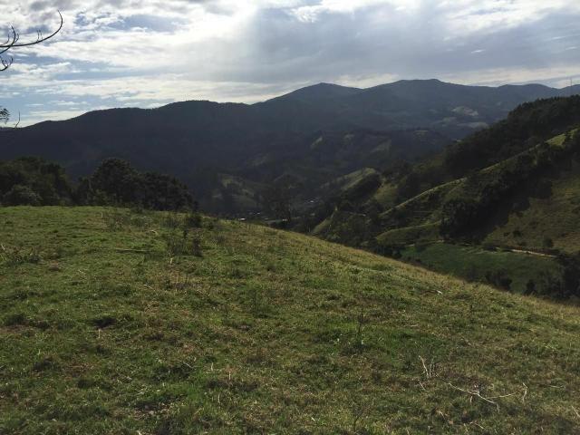 Excelente Fazenda 1km do centro de Delfim Moreira - Foto 2