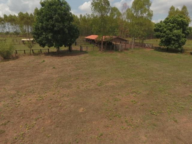 Fazenda 5.900 há (1.219 alq) pronta para produção Bovina norte do Tocantins - Foto 18