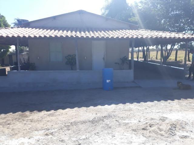 Fazenda no município de Edeia - GO - Foto 2