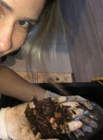 AL- 100 MINHOCAS CALIFORNIANAS VERMELHAS -compostagem doméstica