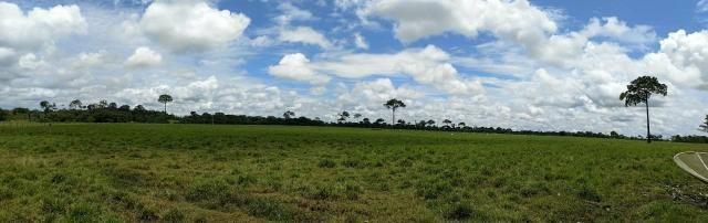 Área Rural (61 hectares) - Foto 5