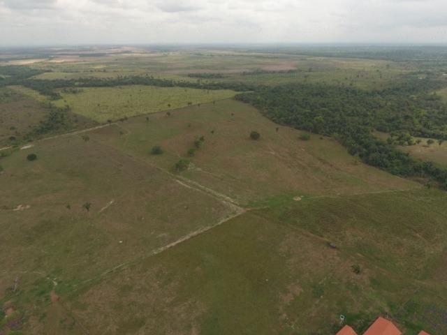 Fazenda 5.900 há (1.219 alq) pronta para produção Bovina norte do Tocantins - Foto 10