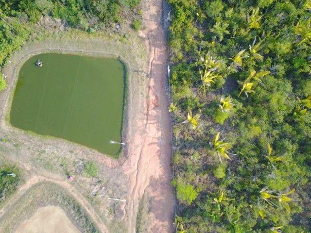 Fazenda com 123 hectares e 4 tanques de peixes - Foto 5