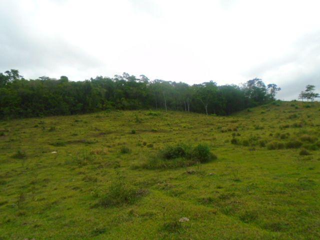 Código 223 Fazenda localizada no Retiro, próxima a RJ 106, Maricá-RJ - Foto 6