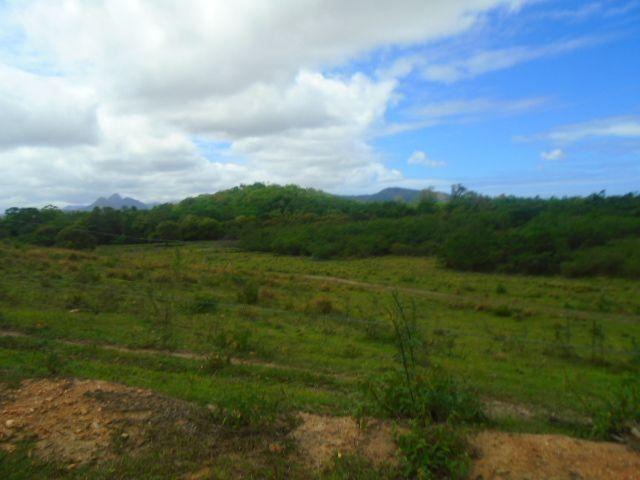 Código 223 Fazenda localizada no Retiro, próxima a RJ 106, Maricá-RJ - Foto 8