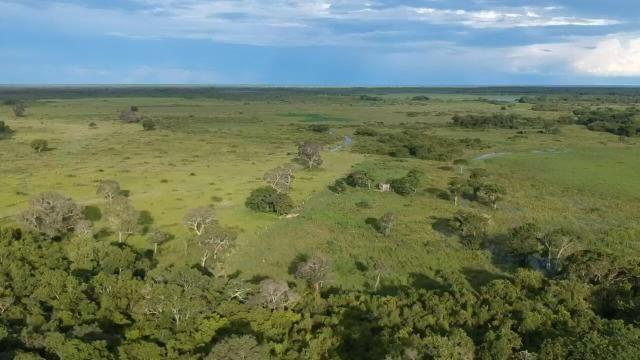 Fazenda 9.715 hectares no pantanal de Poconé MT - Foto 12