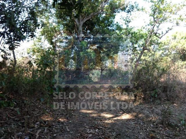 Otima Fazenda Muni. de Santo Antonio de Leveger a 20 km de Cuiabá - Foto 9