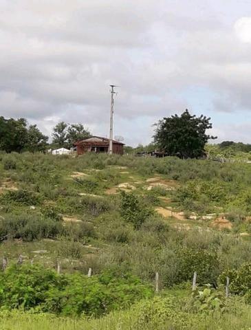 Fazenda rural em forquilha - Foto 11